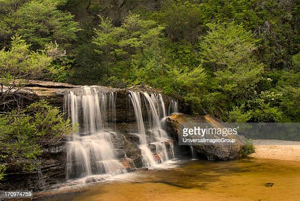 Cascades above Wentworth Falls Wentworth Falls Blue Mountains National Park Katoomba Blue Mountains New South Wales NSW Australia