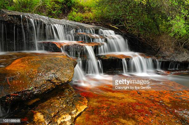 cascades at yosemite creek - blue mountains national park stock pictures, royalty-free photos & images