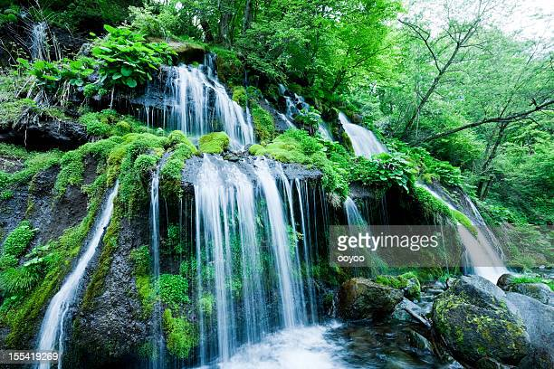 cascading water - spring flowing water stock pictures, royalty-free photos & images