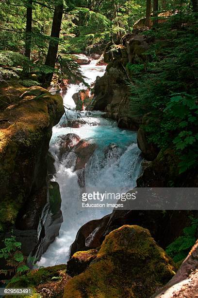 Cascading waterfalls of Avalanche Creek flow through a narrow spot in the canyon along the Avalanche Lake hiking trail in Glacier National Park...