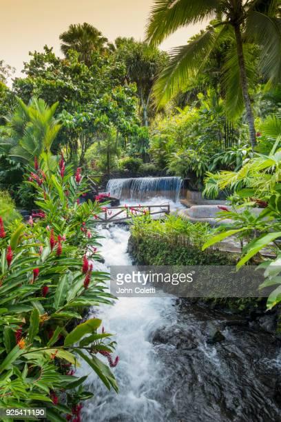 cascading waterfalls, thermal springs, tourist resort - サンカルロス ストックフォトと画像
