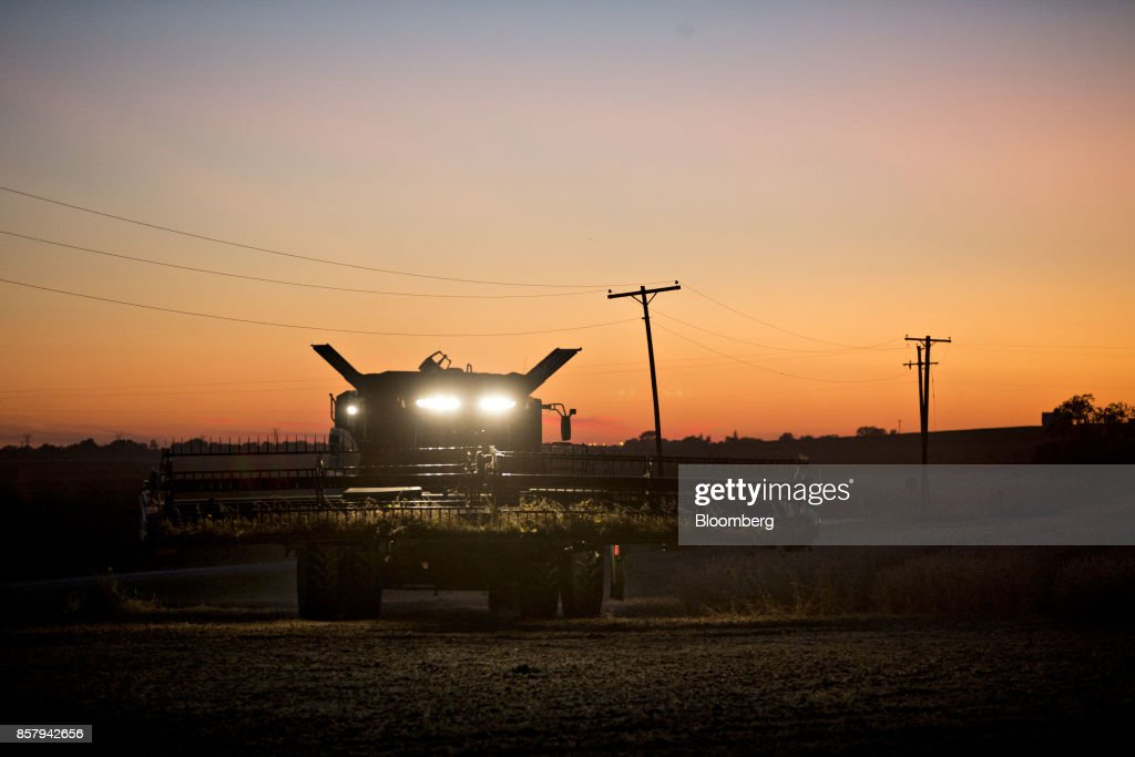 A Case IH Agricultural Equipment Inc. combine harvester drives through a soybean field at dusk during harvest in Buda, Illinois, U.S., on Friday, Sept. 29, 2017. Soybean futures for November delivery rose 0.1% a bushel on the Chicago Board of Trade after falling as much as 0.5%, the lowest since September 13. Photographer: Daniel Acker/Bloomberg via Getty Images