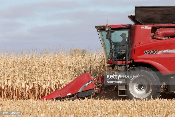 A Case IH combine harvests corn at a farm near Carman Manitoba Canada on Saturday Oct 10 2020 Costs of staples slumped at the start of the global...