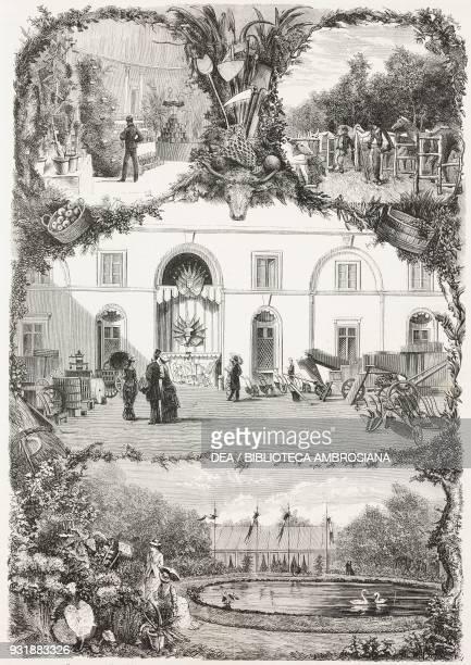 Caserta exhibition product exhibition animal agricultural machinery floriculture fair Italy drawing by Edoardo Matania engraving by Canedi from...