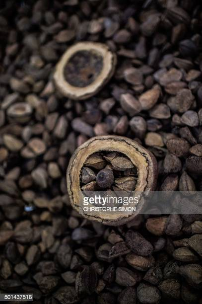 Cashew fruit for sale at the fruit market of Manaus on the banks of the Rio Negro river in Amazonia Brazil on December 11 2015 AFP PHOTO / Christophe...