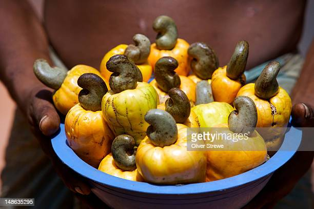 Cashew nuts for sale.