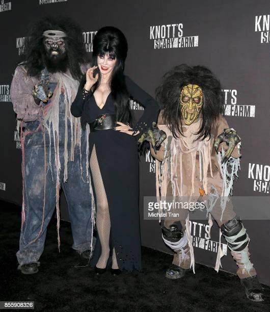 Cassandra Peterson aka Elvira Mistress of the Dark arrives at Knott's Scary Farm and Instagram's Celebrity Night held at Knott's Berry Farm on...