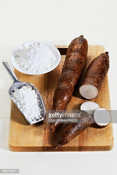 Cassava and tapioca flour
