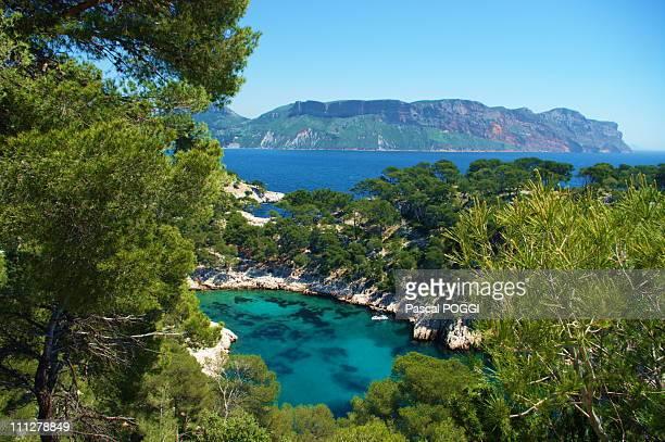 cassis calanque de port pin 110 et baie de cassis - cassis stock pictures, royalty-free photos & images