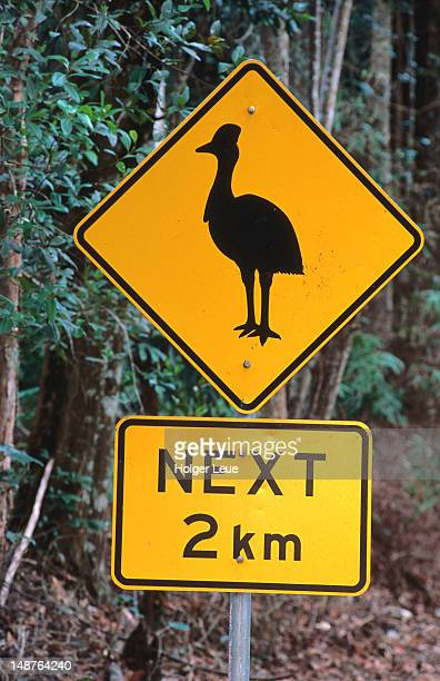 Cassowary warning sign.