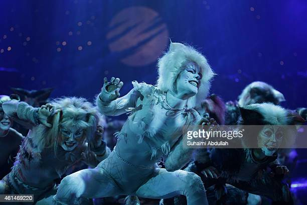 Cast members for the musical 'CATS' perform on stage during a media preview at the Marina Bay Sands Mastercard Theatre on January 13 2015 in...