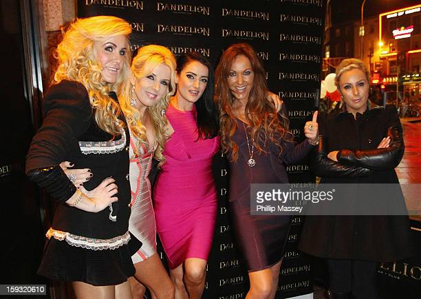 Cast members Lisa Murphy Roz Flanagan Virginia Macari Jo Jordan and Danielle Meagher attend the wrap party for 'Dublin Wives' at Dandelion on January...