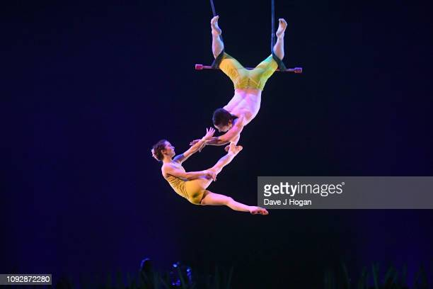 Cast members of Cirque Du Soleil TOTEM perform during the Fixed Trapeze Duo act during a dress rehearsal at Royal Albert Hall on January 11 2019 in...