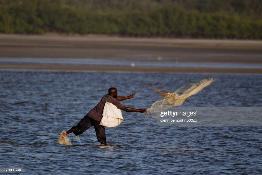 Cast Netting The Shallows Stock-Foto - Getty Images