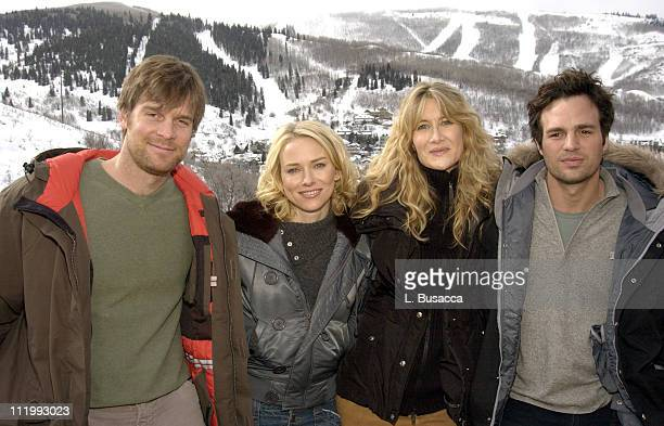 Cast of We Don't Live Here Anymore Peter Krause Naomi Watts Laura Dern and Marc Ruffalo