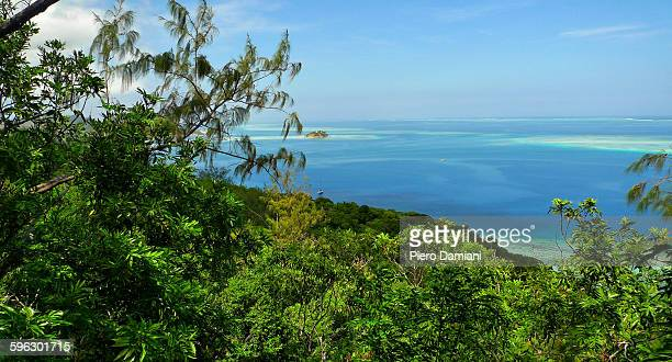 castaway island - western division fiji stock photos and pictures