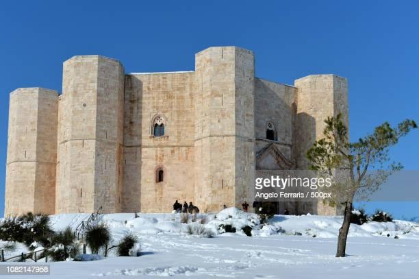 castel del monte (castle of the mount) in apulia, italy. - castel del monte foto e immagini stock