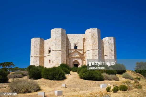 castel del monte in puglia, south-east italy - castel del monte foto e immagini stock