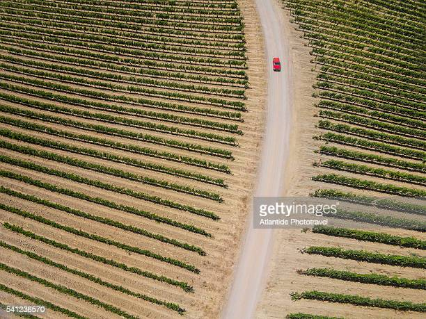 Castello Altesi vineyards, air view by drone