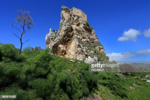 Castello di Mussomeli castle or Castello Manfredonico built by XIV to il XV century Caltanisetta province Sicily Italy Europe