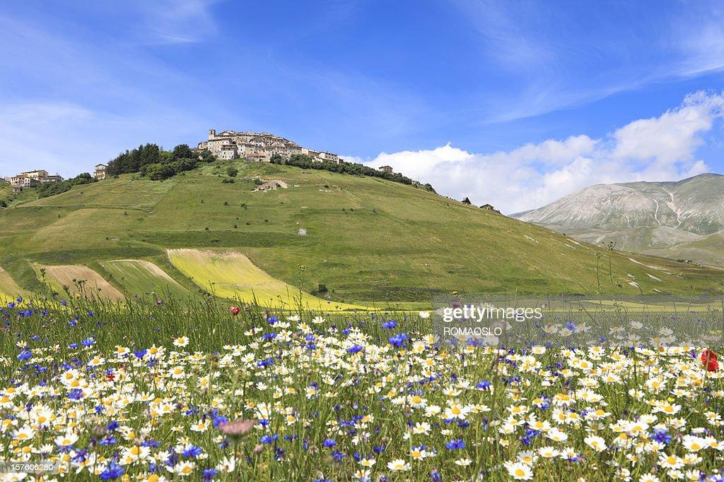 Castelluccio and meadow, Umbria Italy : Stock Photo