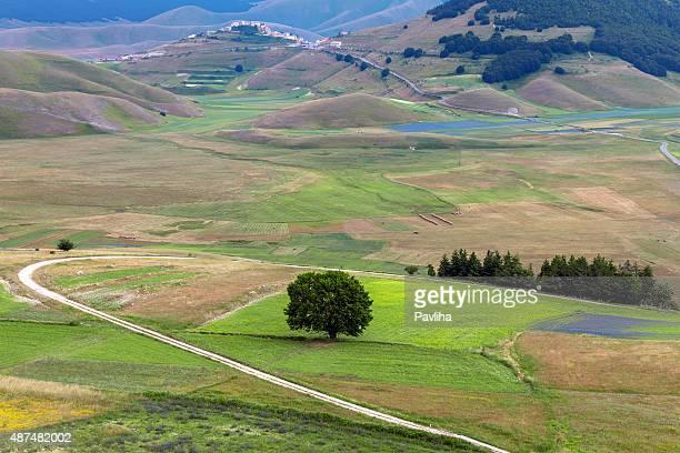 カステルッチオ di norcia (イタリア)、村の緑の丘 - ノルチャ ストックフォトと画像