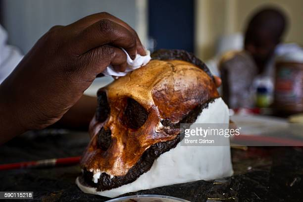 Casting Lab Technicans at Wits University Paleo Sciences department work on the Sediba hominid project making precise resin copies of fossil finds on...