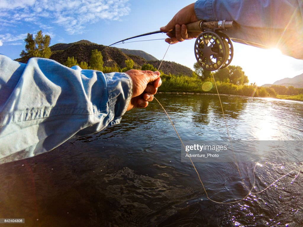 Casting on River Fly Fishing : Stock Photo