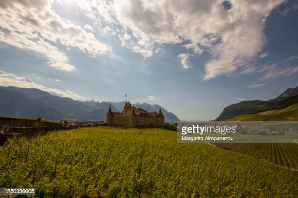 castle and vineyards in the nature of switzerland - ヴォー州 ストックフォトと画像
