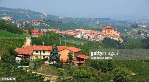 Castle Castello Falletti and Village Barolo Langhe Piedmont Italy