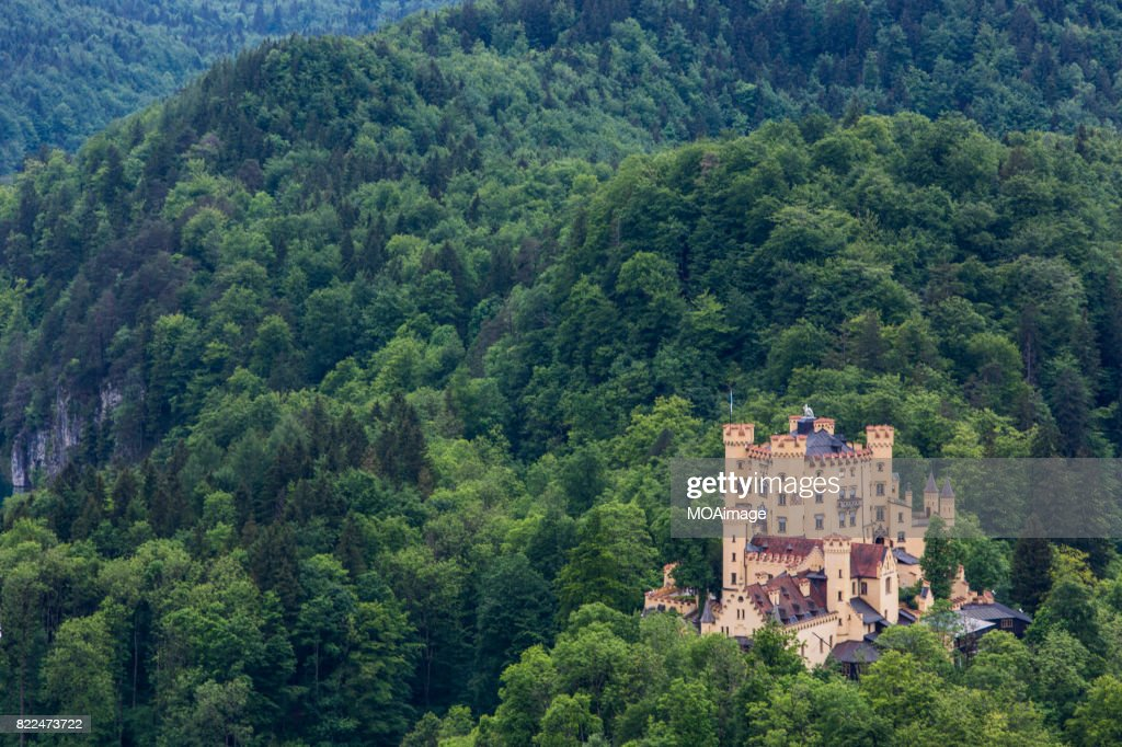 Castle Hohenschwangau : Stock Photo