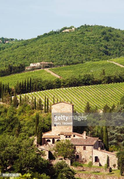 castle in chianti, italy - chianti region stock photos and pictures