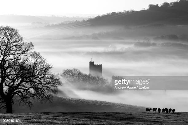 Castle In Foggy Weather