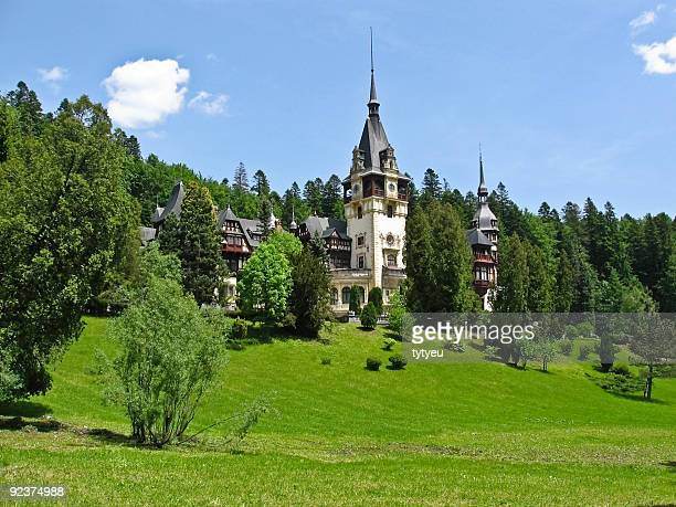 castle in the woods - transylvania stock pictures, royalty-free photos & images