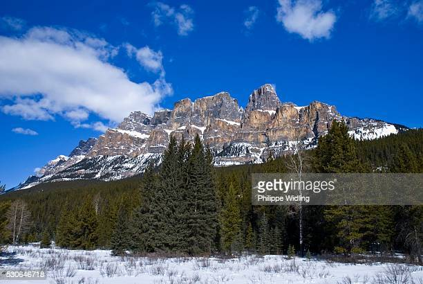 castle mountain, banff national park, alberta, canada - castle mountain stock photos and pictures