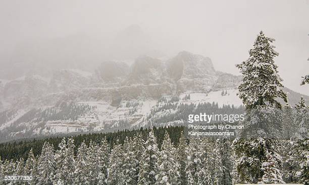 castle mountain chalets - chateau lake louise stock photos and pictures