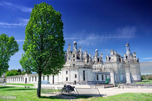 chateau de chambord - loire valley stock pictures, royalty-free photos & images