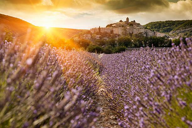 Castle Overlooking Field Of Flowers Wall Art