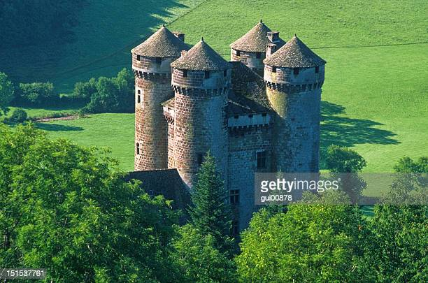 castle - auvergne stock pictures, royalty-free photos & images