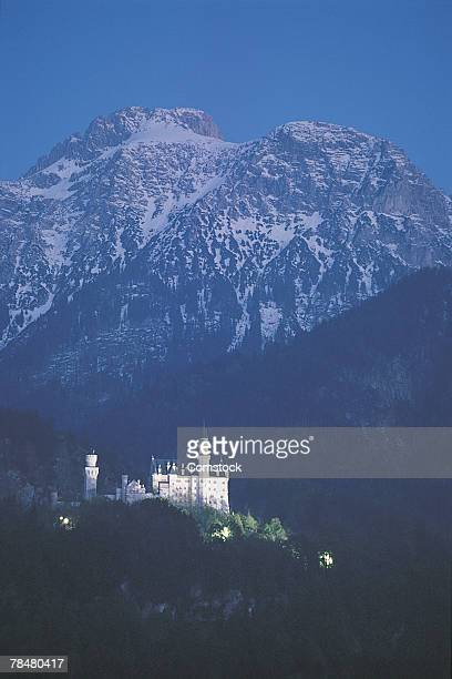 castle - neuschwanstein castle stock pictures, royalty-free photos & images
