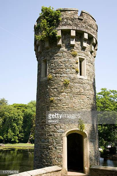 castle turret - tower stock pictures, royalty-free photos & images