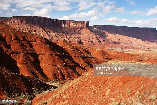 Castle Valley red soil