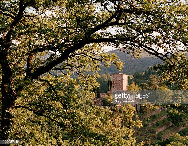 castle viewed through trees - yeowell foto e immagini stock