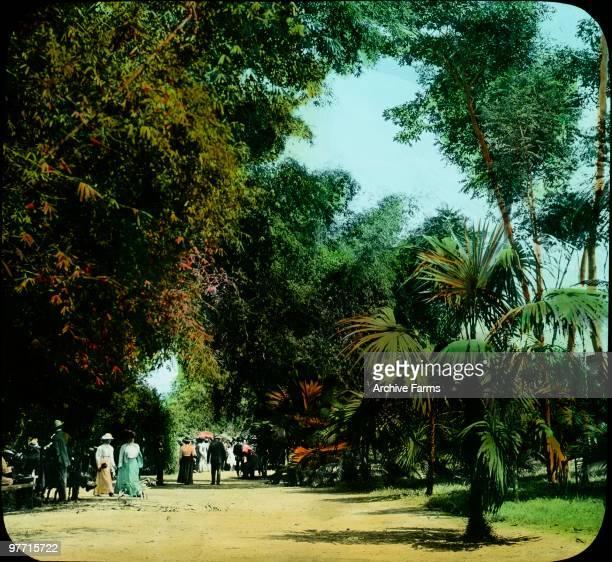 Castleton Gardens Kingston Jamaica