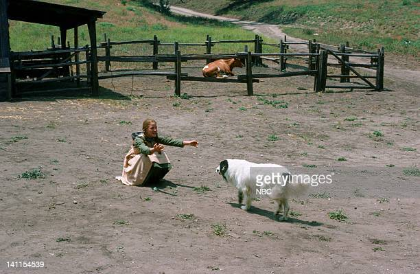 PRAIRIE 'Castoffs' Episode 1 Aired Pictured Melissa Gilbert as Laura Ingalls Jeffrey the Dog as Bandit Photo by NBCU Photo Bank