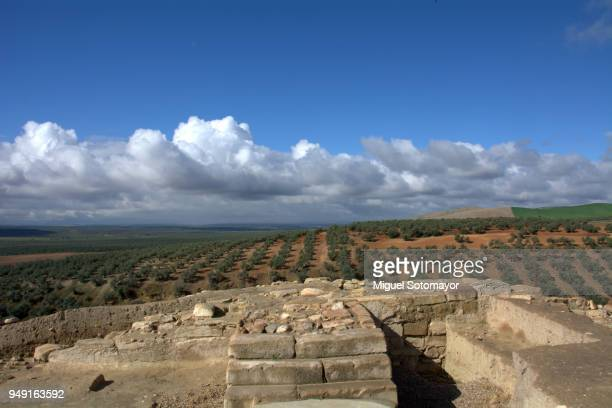 castulo, the iberoromana city - ruina antigua fotografías e imágenes de stock