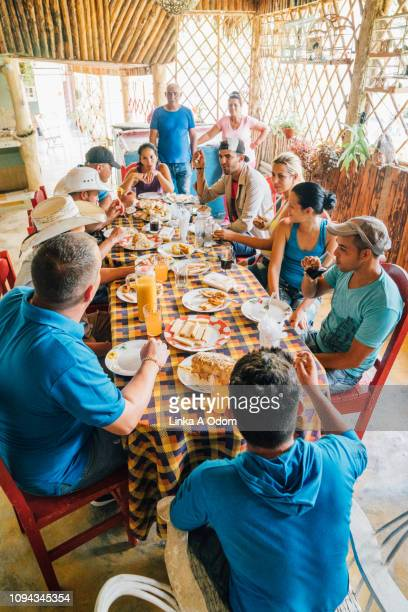 casual daytime dinner party - nosotroscollection stockfoto's en -beelden