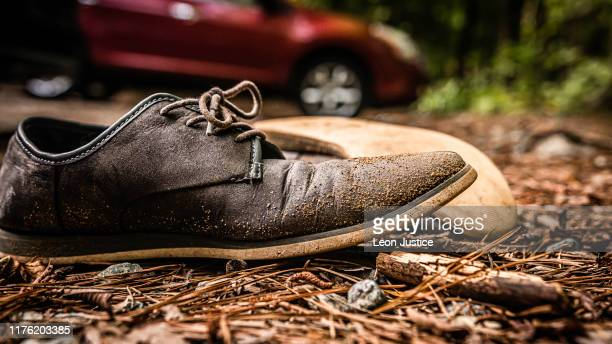 casual shoe in the forest - loafers stock pictures, royalty-free photos & images
