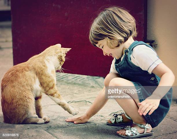cat and child at play - hairy girl stock pictures, royalty-free photos & images
