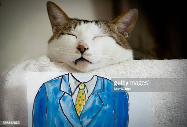 cat and illustration - mamigibbs stock photos and pictures